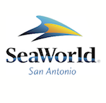 summer camp field trip austin tx sea world san antonio